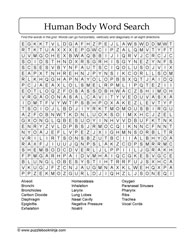 Word Find Human Body Puzzle