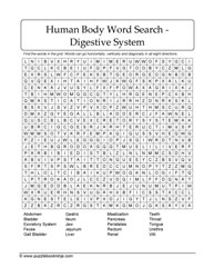 Digestive System Puzzle