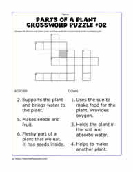 Plant Parts Crossword - No Hint